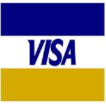 Visa Logo Card